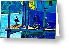Blue Pelicans Greeting Card