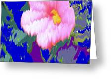 Blue Pink Greeting Card