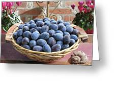 Blue Plums In A Basket Greeting Card