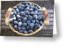 Blue Plums Greeting Card