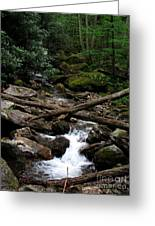 Blue Ridge Brook Greeting Card