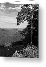 Blue Ridge Mountains - Virginia Bw 10 Greeting Card