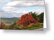 Blue Ridge Parkway, Buena Vista Virginia 5 Greeting Card