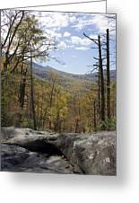Blue Ridge View Greeting Card