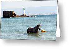 Blue Sea Greeting Card
