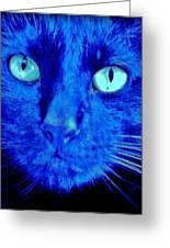 Blue Shadows Greeting Card