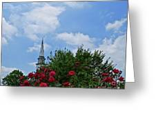 Blue Sky And Roses Greeting Card