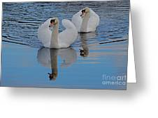 Blue Sky And Two Swans Greeting Card