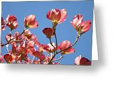 Blue Sky Art Prints Pink Dogwood Flowers 16 Dogwood Tree Art Prints Baslee Troutman Greeting Card