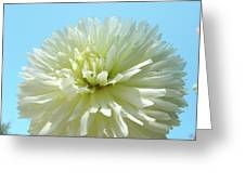Blue Sky Art White Dahlia Flower Floral Prints Baslee Troutman Greeting Card