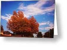 Blue Sky Autumn Greeting Card