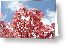Blue Sky Clouds Landscape 7 Pink Dogwood Tree Baslee Troutman Greeting Card