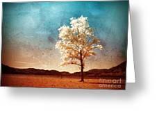 Blue Sky Dreams Greeting Card