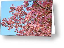Blue Sky Floral Art Print Pink Dogwood Tree Flowers Baslee Troutman Greeting Card