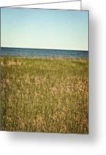 Blue Sky Green Grass Greeting Card