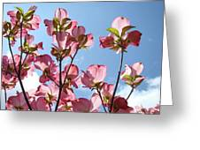 Blue Sky Landscape White Clouds Art Prints Pink Dogwood Flowers Baslee Troutman Greeting Card