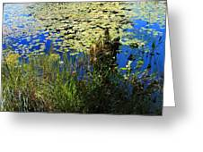 Blue Sky Pond Greeting Card
