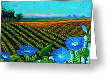 Blue Sky Smiling Greeting Card