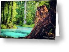 Blue Springs Greeting Card