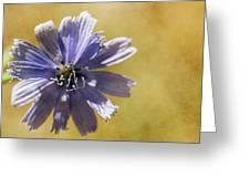 Blue Star #2 Greeting Card