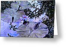 Blue Stillness Greeting Card