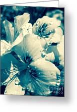 Blue Summer Flower Greeting Card