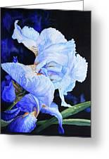Blue Summer Iris Greeting Card