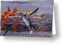 Blue Throated Hummingbird Greeting Card