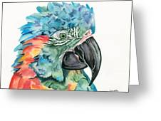 Blue-throated Macaw Greeting Card