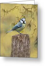 Blue Tit Bird II Greeting Card