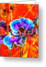 Blue Velvet Orchids Greeting Card