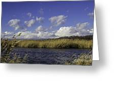 Blue Waters Of The Marsh Greeting Card