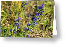 Blue Weed Greeting Card