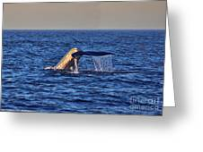 Blue Whales Tail Greeting Card
