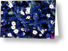 Blue White I Greeting Card