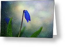 Blue Wild Flower Greeting Card