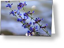 Blue Wildflowers Over Rimrock Lake Greeting Card