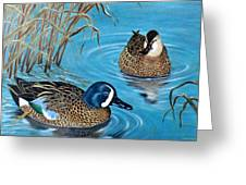 Blue-winged Teals Greeting Card