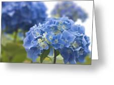 Blue Wonder Greeting Card