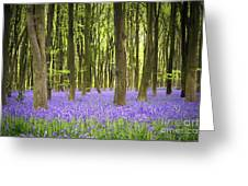 Bluebell Carpet Greeting Card by Jane Rix