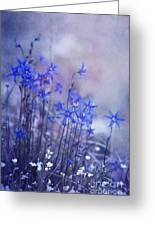 Bluebell Heaven Greeting Card