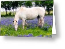 Bluebell Lunch Greeting Card