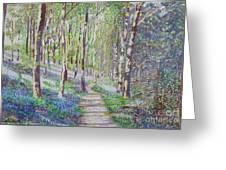 Bluebell Walk At Llanilar Aberystwyth Greeting Card