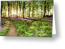 Bluebell Woods With Birds Flocking  Greeting Card