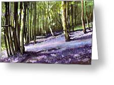 Bluebells At Grimescar Wood Greeting Card