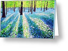 Bluebells In The Woodlands Greeting Card