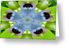 Blueberry Kaleidoscope Greeting Card