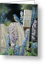 Bluebird Greeting Card