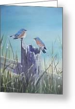 Bluebirds On Post Greeting Card