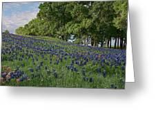 Bluebonnet Field Greeting Card